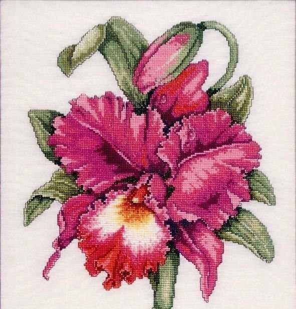 Цветы | Просмотров: 1287