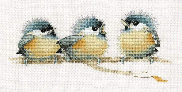 Птицы, бабочки и насекомые