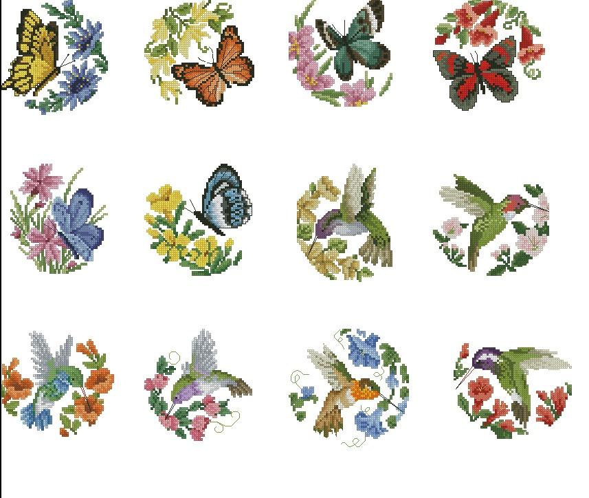 Птицы и бабочки